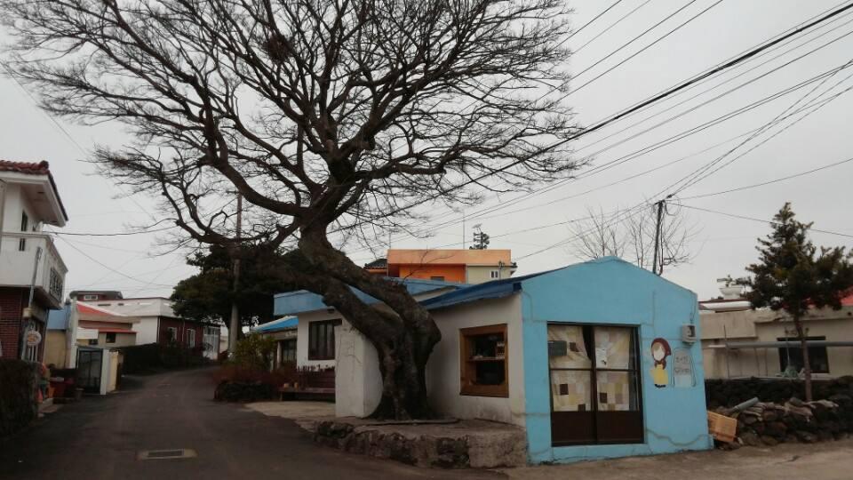 마을여행.jpg