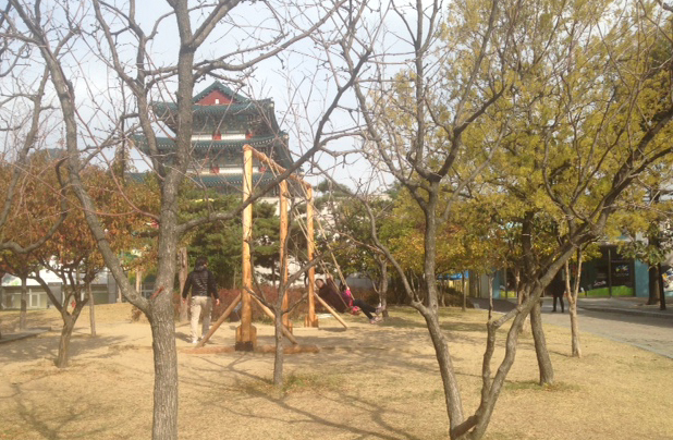 나무전2.JPG