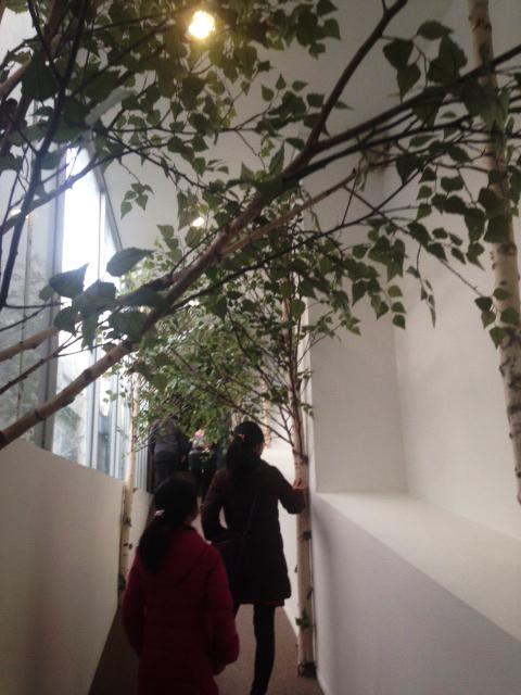 나무전4.JPG