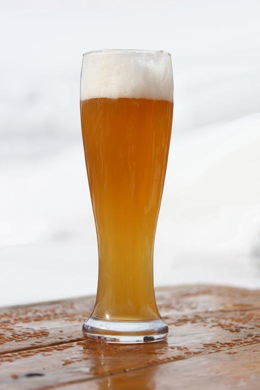 맥주.jpg