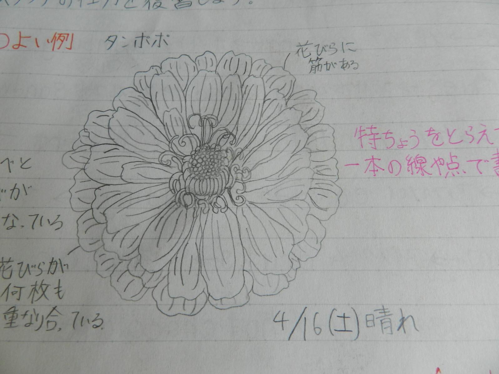 크기변환_DSCN6634.JPG