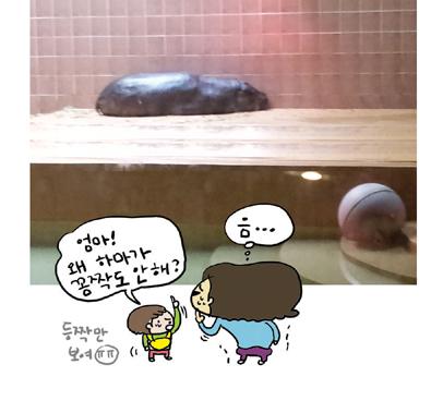 즐거운아줌마동물원소풍08.jpg