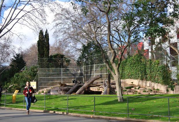 바르셀로나동물원8DSC_6924s.jpg