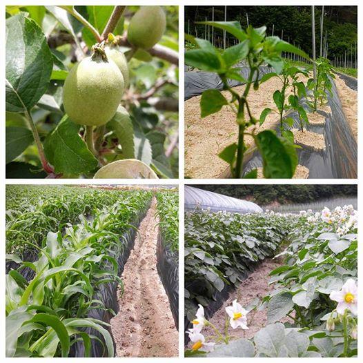 농부통신 25.jpg