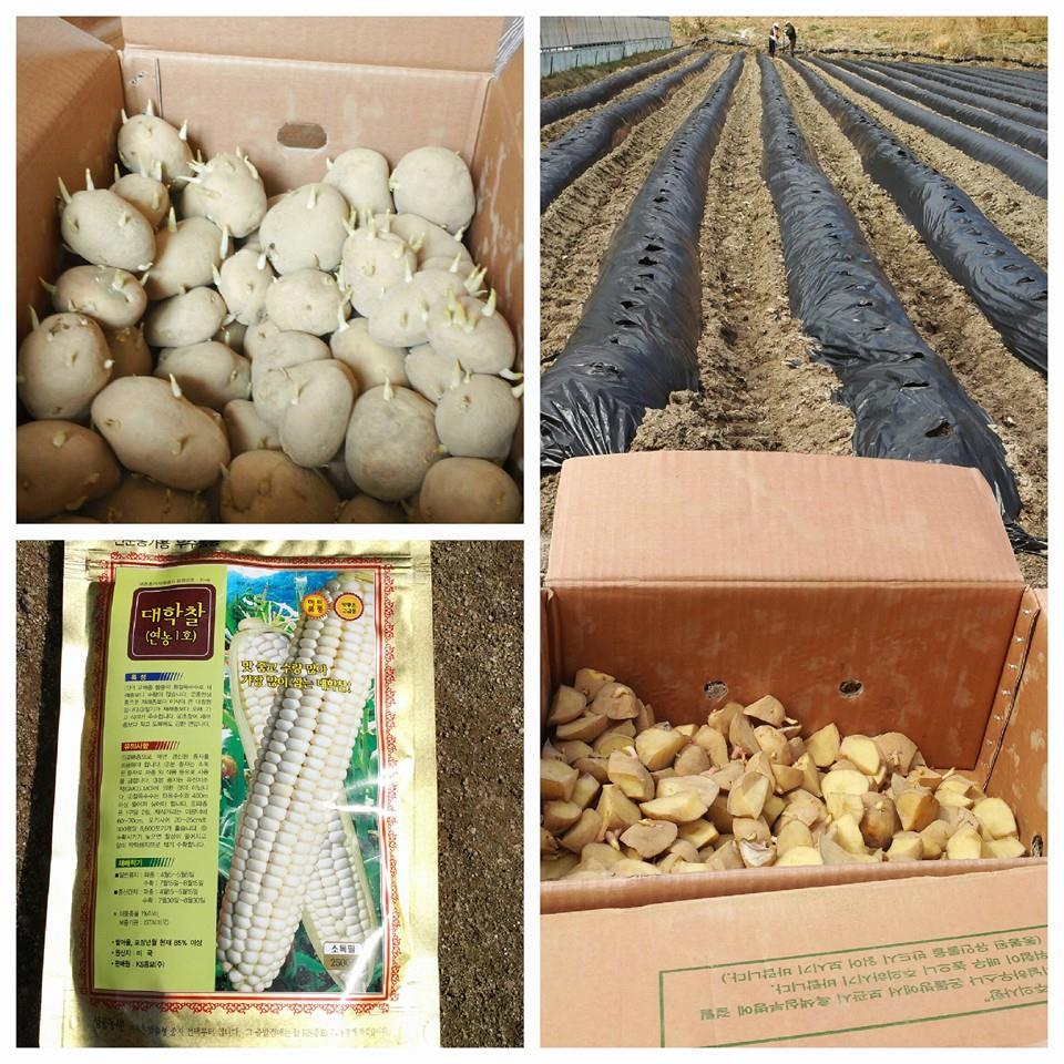 농부 통신 19-1.jpg