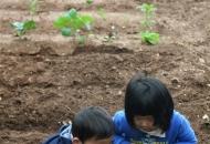 자녀에게 학군보다 자연과 대화를 선물한 부모들