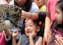 [건아법③] 순환기 및 정신신경계가 허약한 아이 건강하게 하는 법
