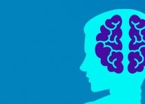 IQ보다 창의성, 뇌의 변화