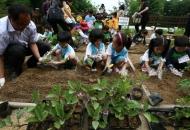 아이살림 생명살림의 유아교육, '생태유아교육'