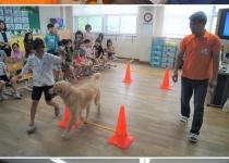 '마니' '우니'…강아지가 교실로 찾아와 수업합니다