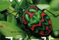 [9월 15일 어린이 새책] 딩동~ 곤충 도감 외