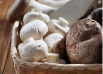 임산부에게 좋은 10가지 - 6 버섯
