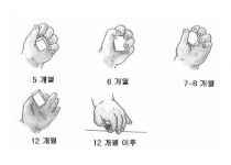 월령별 눈과 손의 협응놀이