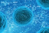 홍역의 원인, 증상, 치료, 예방접종